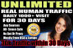 drive real unlimited website,USA traffic,visitors for one month