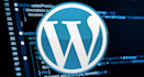 fix Wordpress error, issue and customize theme
