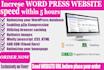 speed up WORDPRESS website speed with in 5 hours