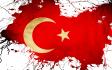 translate English to Turkish
