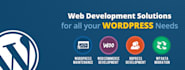 design and develop WordPress site professionally