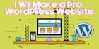 make a Pro Website on Wordpress