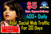 drive UNLIMITED Real Human Traffic For 1 Month