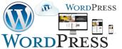 develop static wordpress website