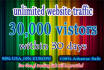 drive 30k USA unlimited website,traffic,visitors
