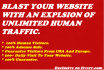 send You Unlimited And Genuine Human Traffic To Your Website Or Blog