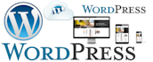 create extremely impressive  WordPress Website