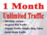 unllmited Web Traffic for 1 month