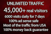 drive UNLIMITED usa  targeted web traffic visitors