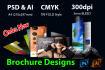 professional company brochure design