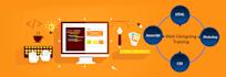 develop responsive website development  wordpress and SEO