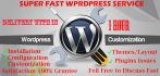 do wordpress plugins, theme Customization and fix error