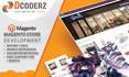 build Magento ecommerce store