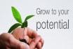 provide strategic career and Academic Coaching Advice
