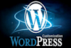 build and develop a professional Wordpress website or Blog
