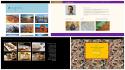 create your Wordpress Website in English or Hebrew RTL