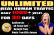 drive real unlimited website,USA,traffic,30k visitors for one month