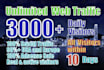 drive unlimited real website,traffic,visitors daily