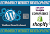 create And Customize Ecommerce Website