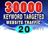 over 30000 KEYWORD targeted visitors website traffic 20 days