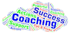 provide Business Coaching, Mentoring