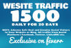 provide daily 1500 targeted,website traffic, visitors to your website