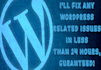 fix any WordPress errors