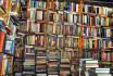 host an author interview or guest blog on SocialBookshelves