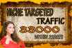 drive 33,000 Genuine niche targeted website,traffic,visitors