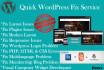 fix WordPress error 24 Hours
