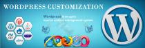 do any customization in WordPress Woo commerce website