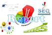 a Full on page report for any keyword, domain and URL