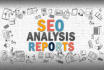 provide SEO Report and Audit your Website