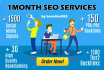 provide 1 Month or 30 Days Expert Seo Services