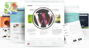 help you to wordpress themes, html, css and other issues