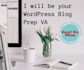 help you with your WordPress blog post
