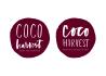 design a quirky text logo