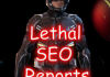 onsite SEO report for your website