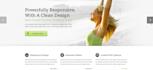 customize AVADA WordPress theme