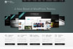 do WordPress Theme Installation in 12 hours