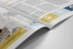 create professional brochure design