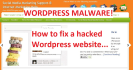build Wordpress Blog,Fix it,Move to new Server,SEO optimize,Secure from Hackers