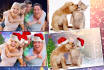 edit your family and pet photos for Christmas