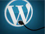 on skype I will teach you how to make WordPress website