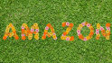 use flowers to create your company name, symbol or text