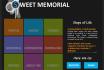design Web sites Professionally