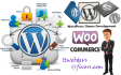 build a WordPress  and Woocommerce website or customize it