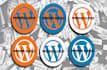 install Wordpress and Theme