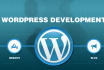 develop Professional Business CMS Website