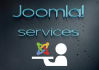 build a professional JOOMLA website for you